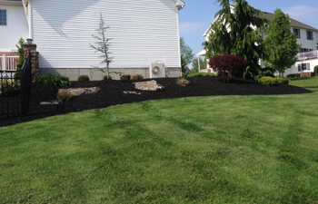 Allentown Lawn Care Services